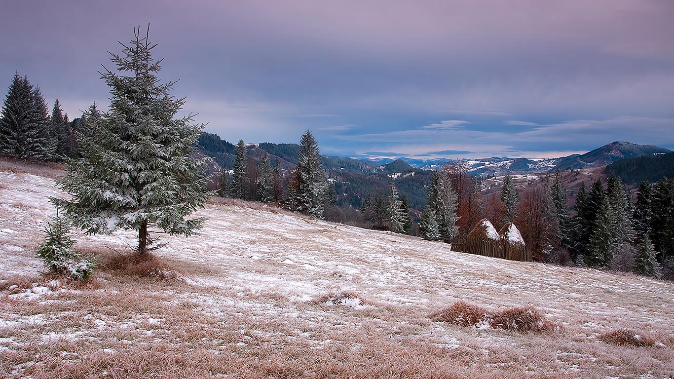Синоптики назвали дату, коли у горах Закарпаття піде сніг