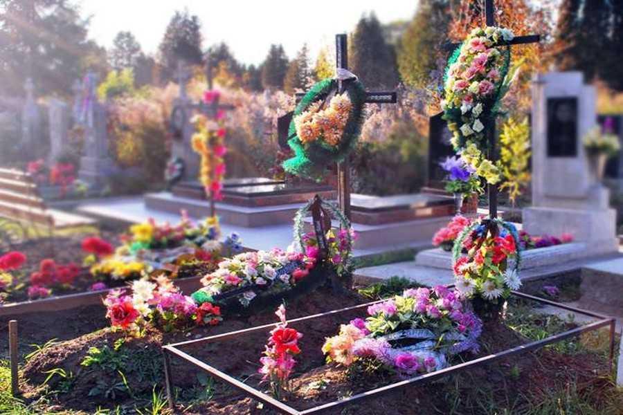У Мукачівській греко-католицькій єпархії розповіли, які квіти не варто приносити на кладовище