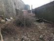 У Мукачеві прибирають територію навколо замку
