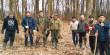 Перші лісовідновлення стартували: на Берегівщині висаджено понад 26 тисяч саджанців