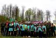 Майже дев'ять тисяч саджанців висадили в Грушівському лісництві на Закарпатті