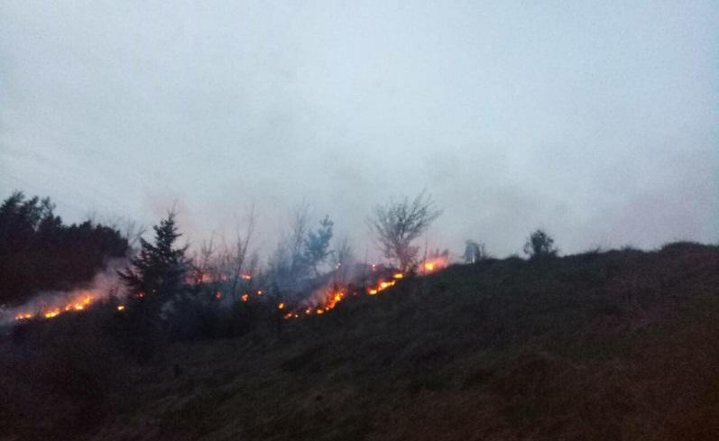 Впродовж доби рятувальники 5 разів гасили пожежі на відкритих територіях