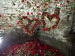 В Чинадієві відбудеться квітковий фестиваль