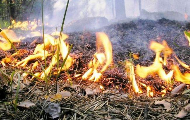 В області очікується надзвичайна пожежна небезпека