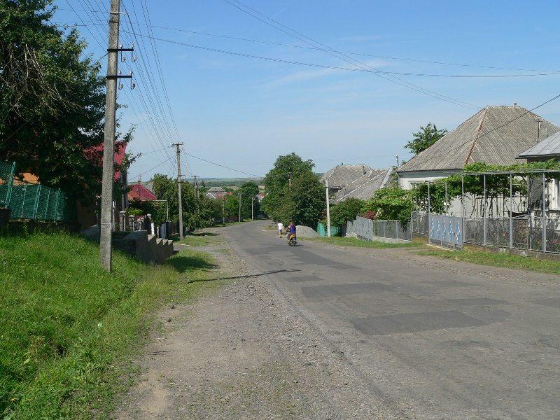Ремонт дороги та нестача питної води: на Мукачівщині обговорили проблеми села Залужжя