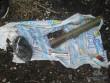 Поліція та СБУ знайшли сховок зброї в Ужгороді