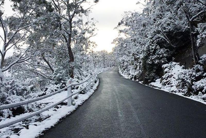 На Закарпаття з Європи йде похолодання: у горах можливе випадання мокрого снігу