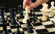 Завтра у Мукачеві розпочнеться міжнародний шаховий фестиваль