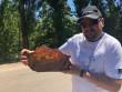 Нардеп Розенблат заявив, що передав музею на Закарпатті шмат бурштину з ящіркою всередині