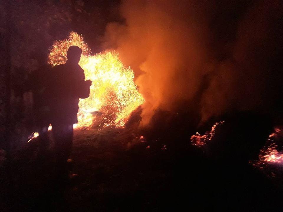 Вночі згоріла тонна сіна