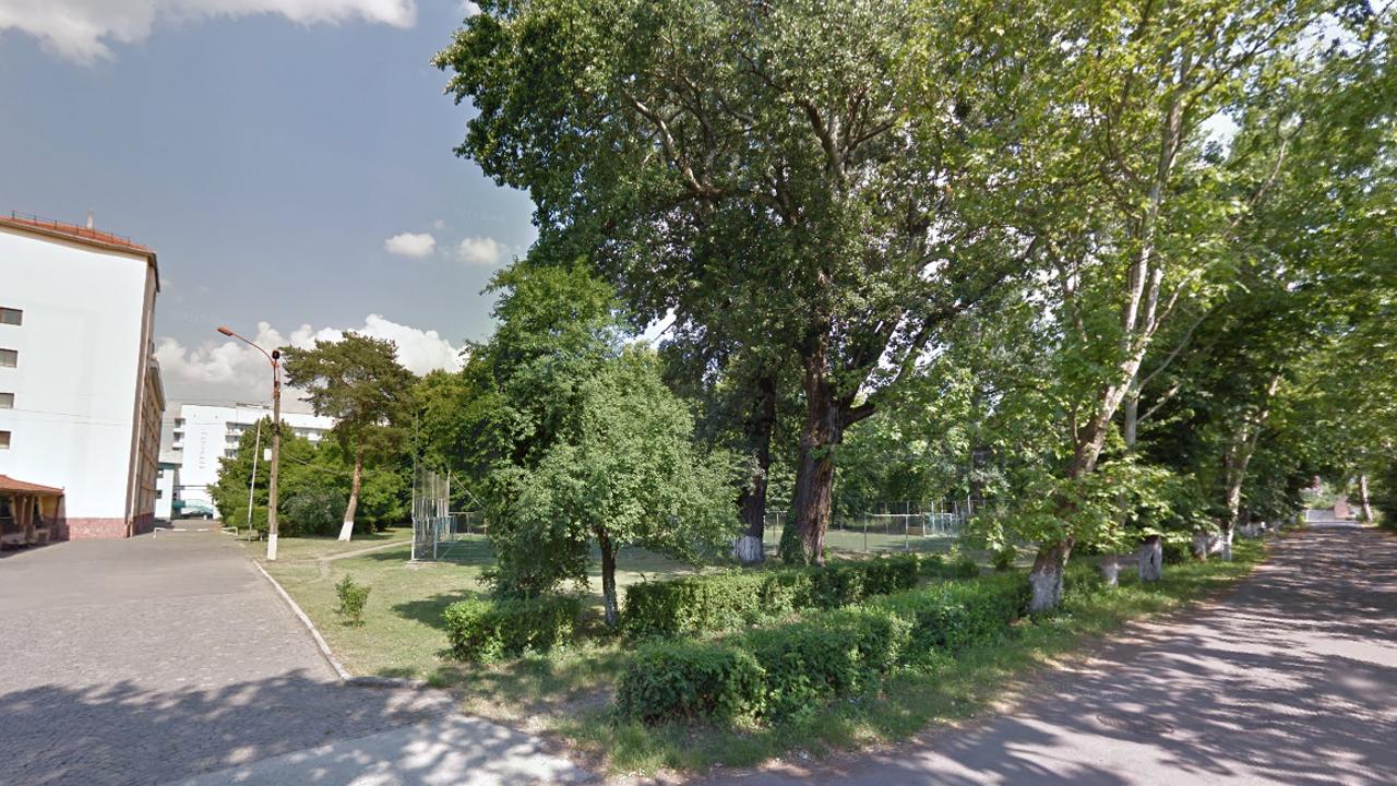 """У Мукачеві під час реконструкції скверу біля """"Інтуриста"""" хочуть вирубати понад 120 дерев"""