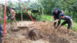 Спецоперація на Виноградівщині: рятувальники діставали із ями коня