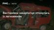 На Львівщині сталась ДТП за участі закарпатця: двоє людей загинули