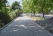 В Ужгороді оновлюють тротуари на одній із вулиць