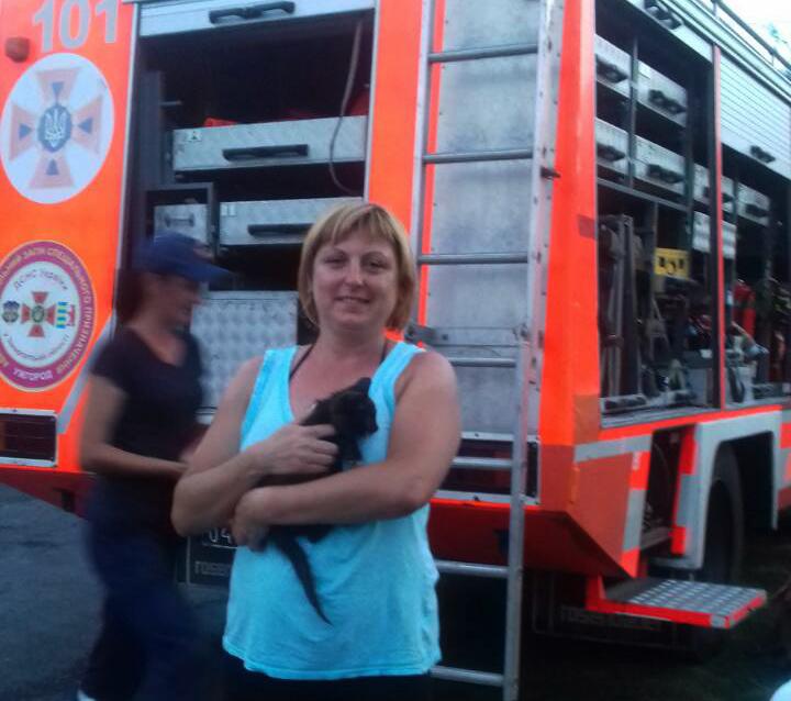 На Ужгородщині врятували кошеня, яке впало у колодязь