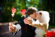 В Ужгороді побито рекорд реєстрації шлюбів за день