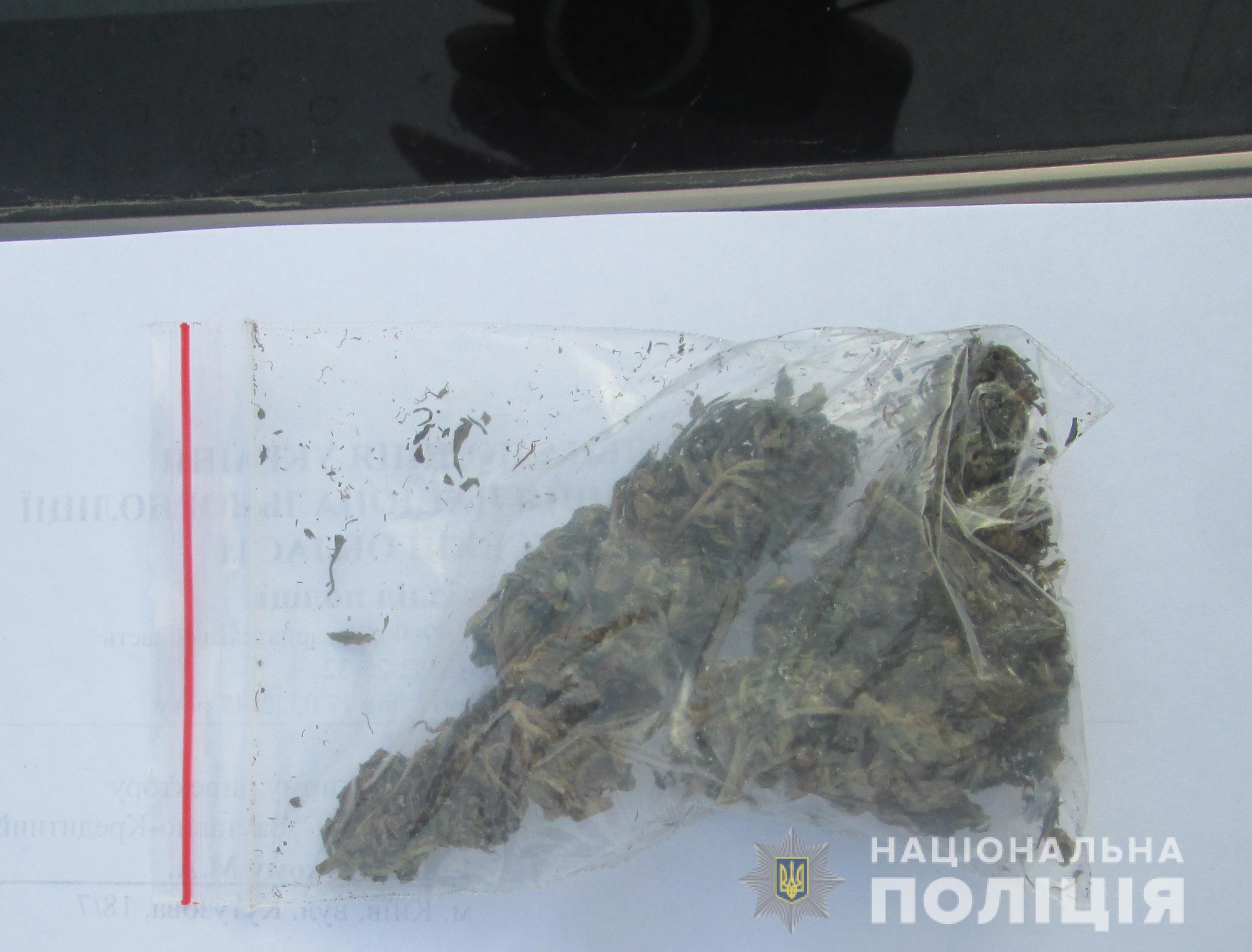 Поліцейські знайшли в машині закарпатця марихуану