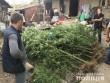 Поліція провела обшуки в одному з сіл Виноградівського району
