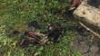 Жінка благала про допомогу: вогнеборці розповіли як врятували бабусю