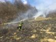 На горі Ловачка, що в Мукачеві, сталася пожежа