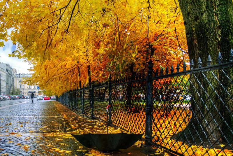 Якою буде погода у жовтні: прогноз від синоптика