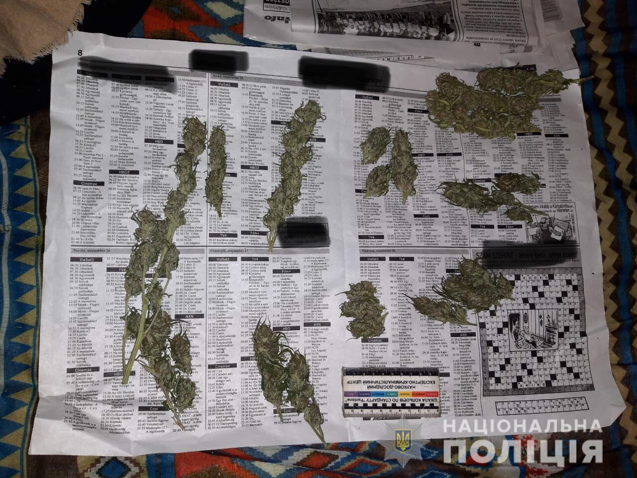 На Виноградівщині у чоловіка знайшли чимало марихуани