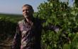 Олег Скрипка виготовлятиме на Закарпатті авторське вино
