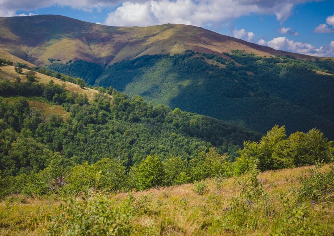 Гора Гимба на Закарпатті щороку приваблює тисячі туристів зі всієї України
