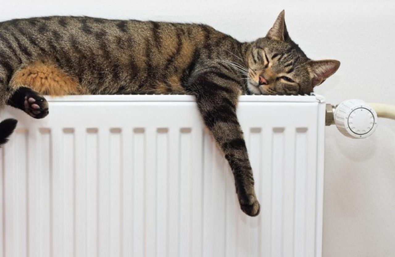Із понеділка, 22 жовтня, в Ужгороді офіційно розпочнеться опалювальний сезон