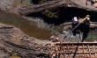 В області триває відновлення зруйнованого паводком музею лісосплаву