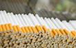 Прикордонники знайшли у кущах 6 ящиків сигарет