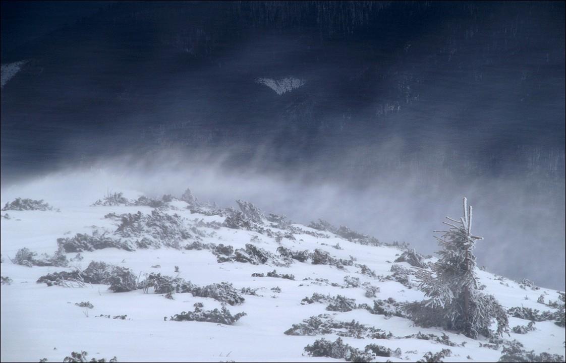 На Закарпатті очікують сніг та мокрий сніг На дорогах буде ожеледиця