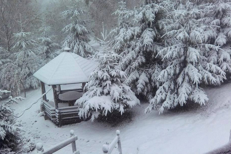 У гірських та східних районах Закарпаття очікують сніг, хуртовини і заметілі