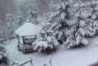 У кількох районах області очікують сніг та хуртовини