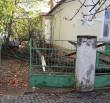 Буревій в Ужгороді: дерева ламалися та падали