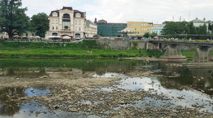 Вирубка лісів та зміна клімату призвели до обміління річок Закарпаття