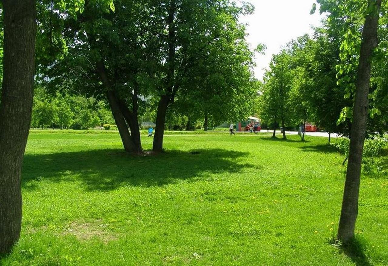 У Мукачеві в мікрорайонах Росвигово та Черемушки облаштують дві паркові зони