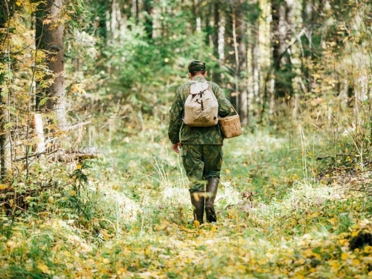 Чоловік із села Кошелево, що на Хустщині, пішов по гриби в Іршавський район і заблукав у лісі