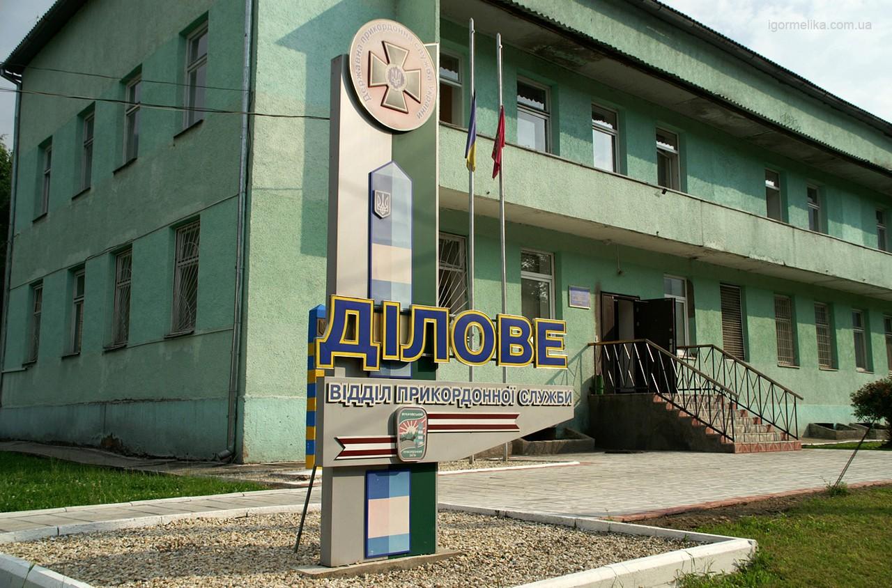 У селі Ділове, що на Рахівщині, прикордонники виявили двох нелегалів – громадянина Гвінеї та пакистанця