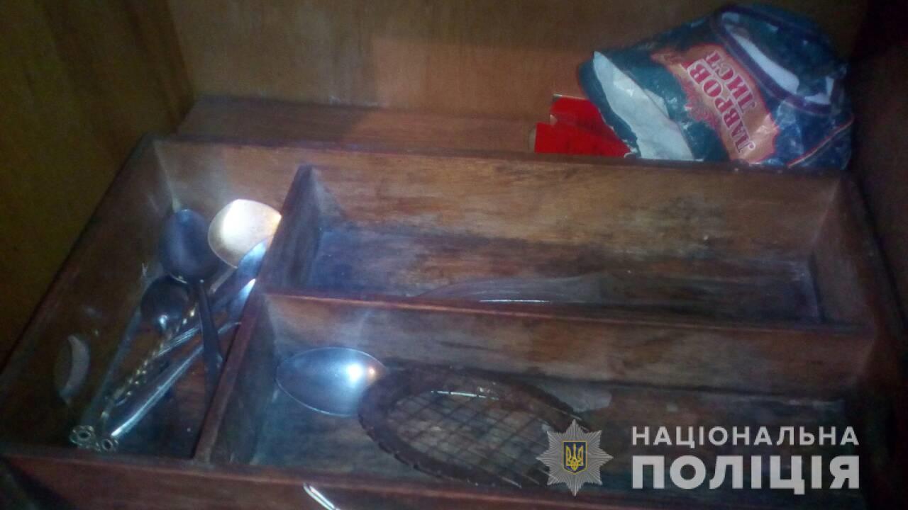 У селі Туриця Перечинського району жінка встромила ножа в спину чоловікові