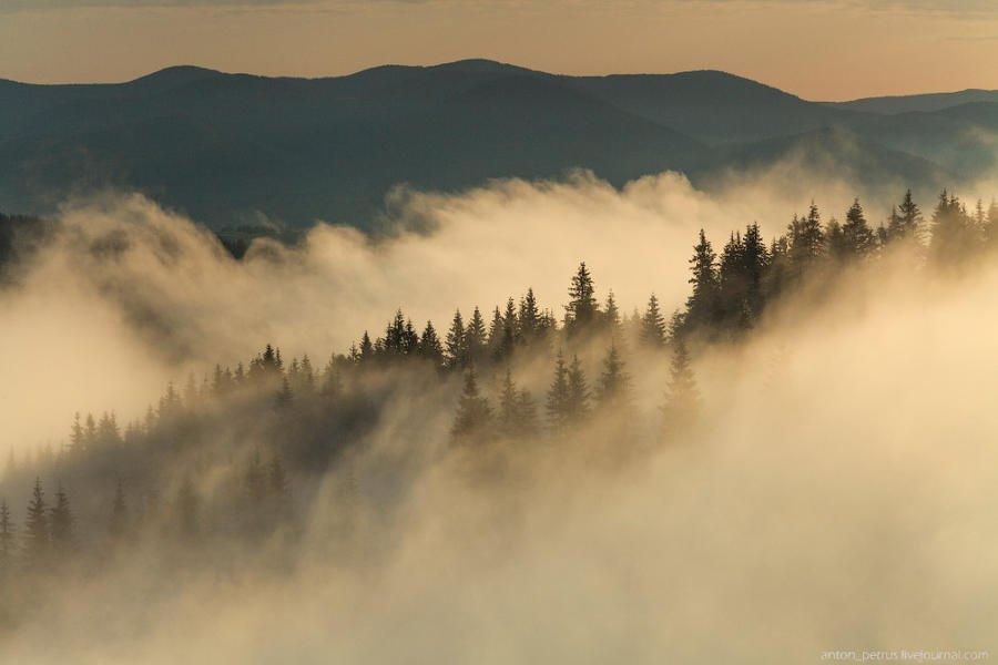 Синоптики попереджають про сильні тумани