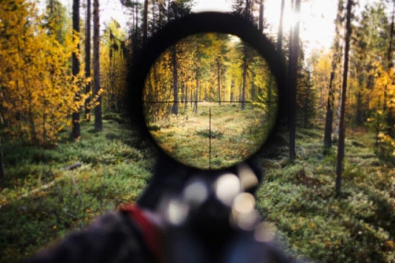 Закарпатця-браконьєра затримали біля українсько-словацького кордону