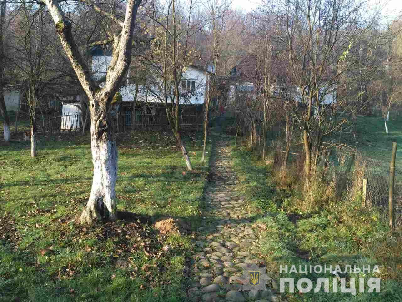 На Іршавщині 59-річна жінка вбила свого співмешканця, який був молодшим за неї на 11 років