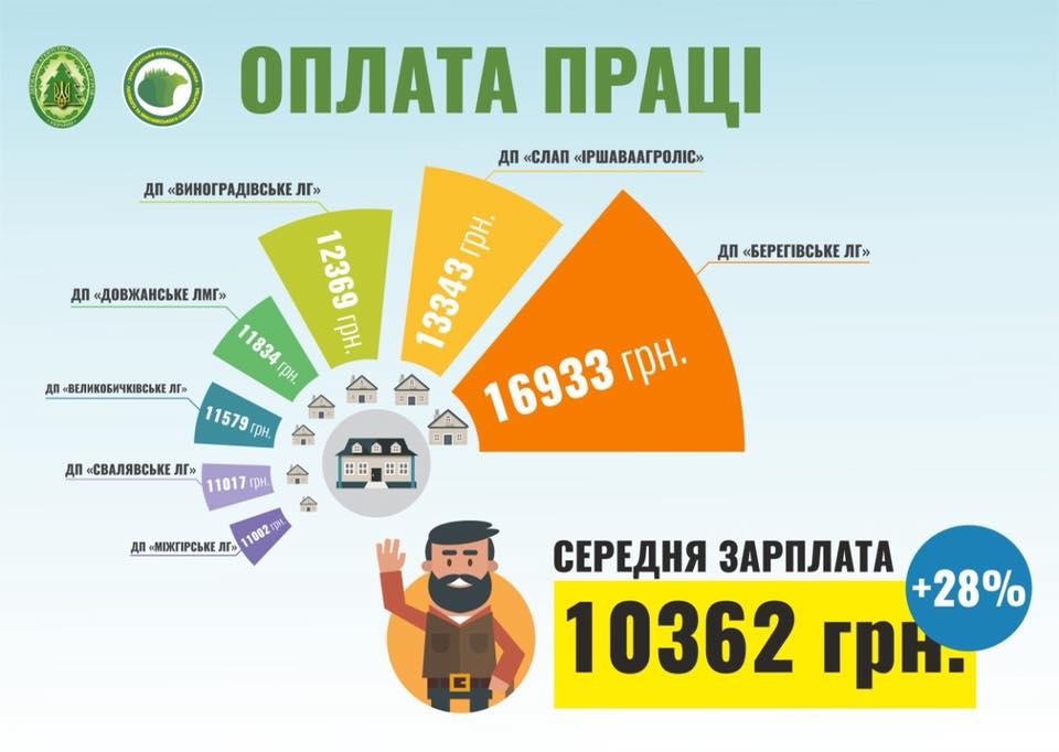 Зарплата лісівників Закарпаття: названо конкретні суми