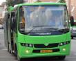 Мукачівець дебоширив у міському автобусі: втрутилася поліція