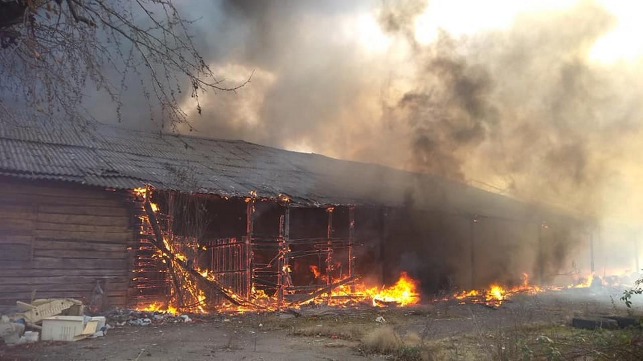 Масштабну пожежу на складах у Виноградові локалізували