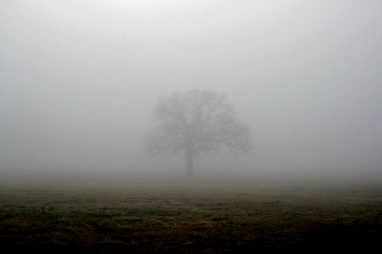Закарпатців попереджають про сильні тумани вночі і вранці