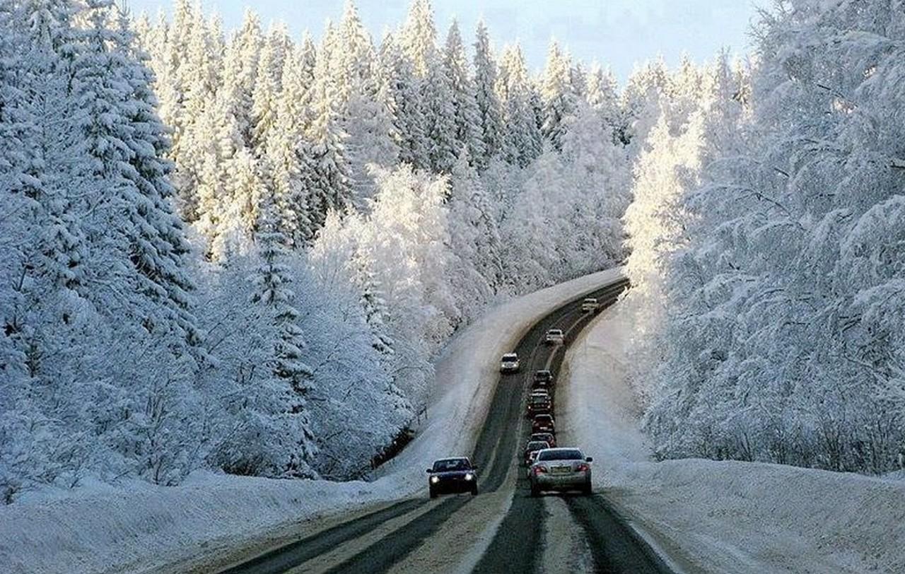 В Закарпатській області випав мокрий сніг: почали підсипати дороги національного та міжнародного значення