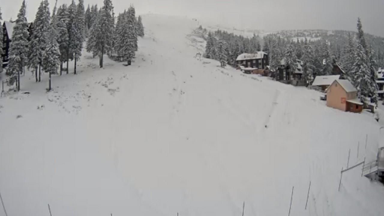 Карпати замітає. Там випало понад 30 см снігу