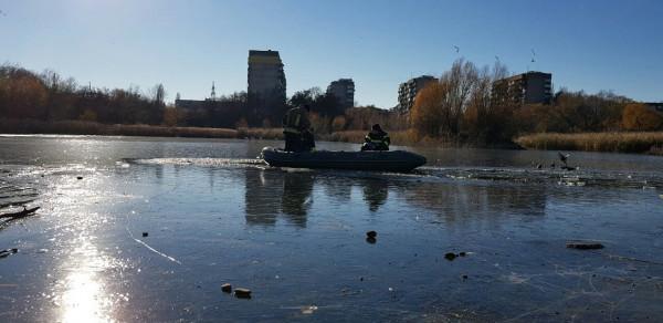 В Ужгороді лебедів врятували із льодової пастки